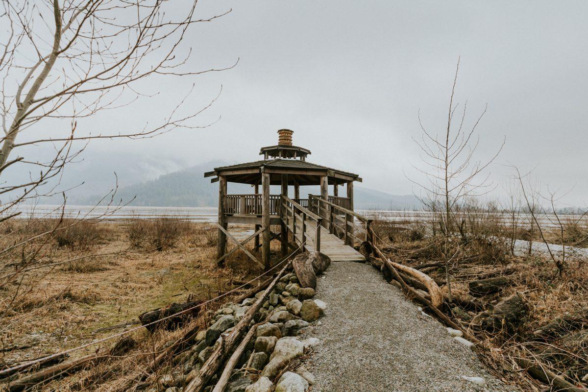 Rowena's Bird Trail